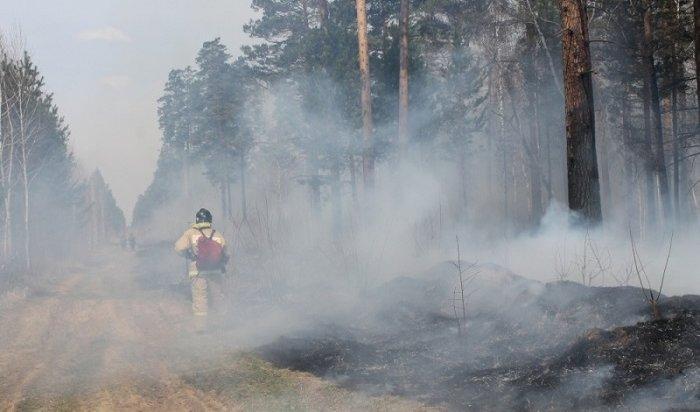 ВИркутской области горит почти 50тысяч гектаров тайги