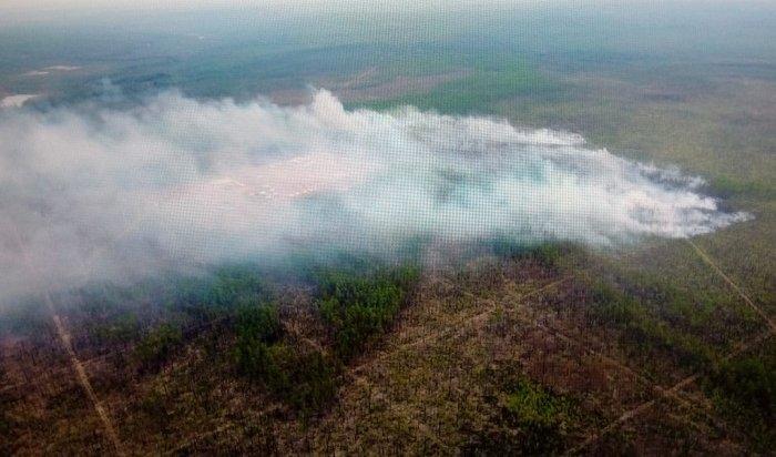 Лес горит вИркутской области наплощади почти 8тысяч гектаров