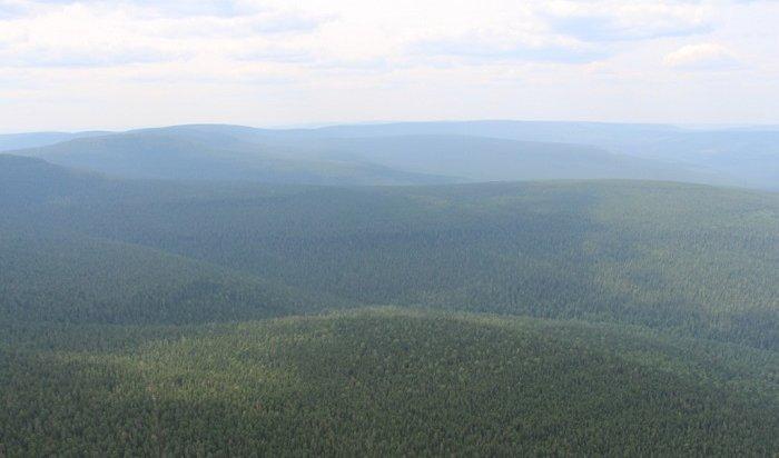 Наутро 22июля вИркутской области незарегистрировано ниодного лесного пожара