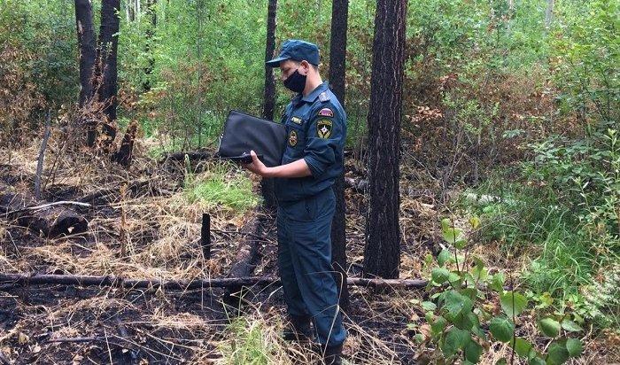 Вэтом году возбуждено 17уголовных дел пофактам лесных пожаров