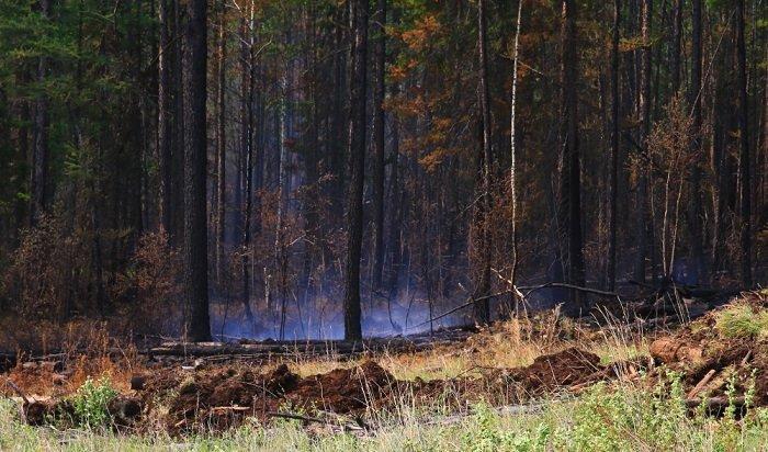 В Приангарье обнаружено два новых пожара