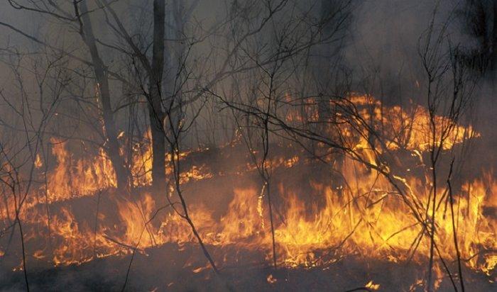 Жители Якутии спасались отпожара налодках (Видео)