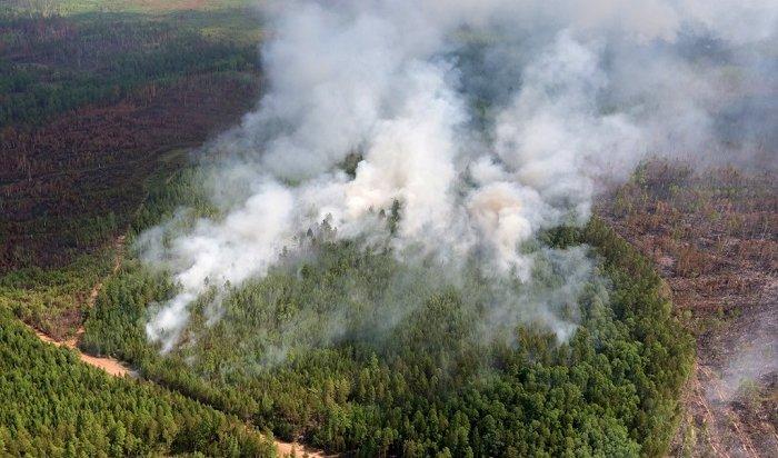 В Иркутской области действуют 15 лесных пожаров