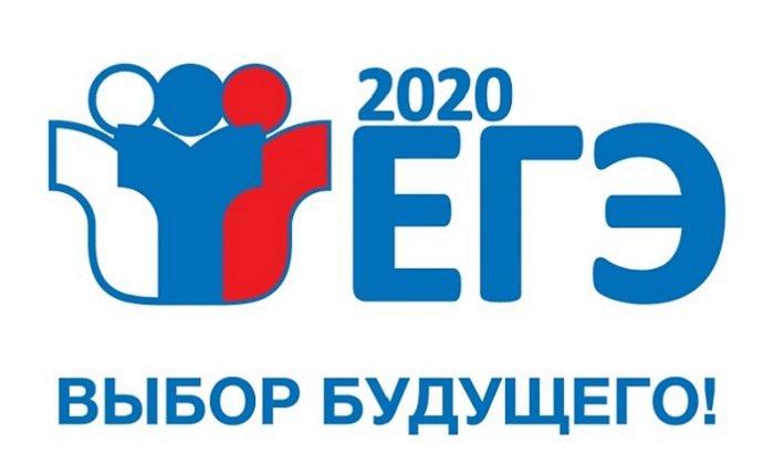 Пять выпускников Иркутской области сдали ЕГЭ на100баллов сразу подвум предметам