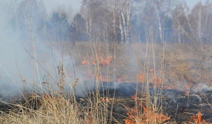 В Приангарье работает 41 стационарный пункт по выявлению загрязнения воздуха из-за пожаров