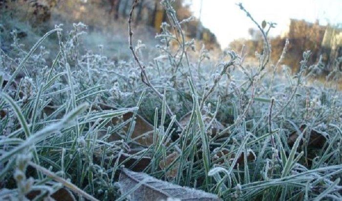 Внекоторых районах Иркутской области ожидаются заморозки до-2ºС