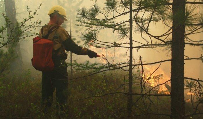 Почти все лесные пожары вПриангарье возникают из-за гроз