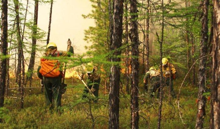 Почти 13тысяч гектарлеса горит вИркутской области