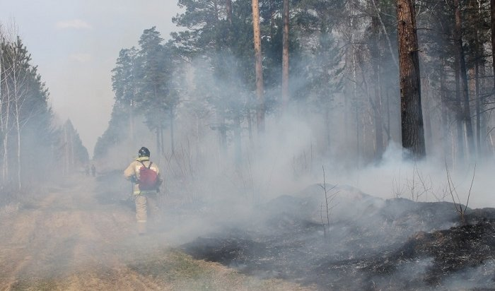 Почти 19тысяч гектаров леса горит вИркутской области