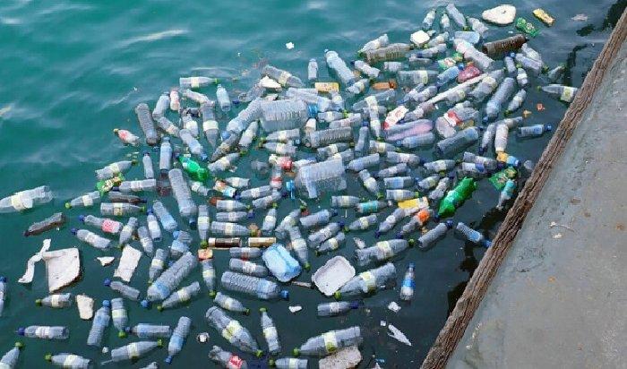 Greenpeace приглашает жителей Иркутска помочь выяснить, чем чаще всего люди мусорят наводоемах