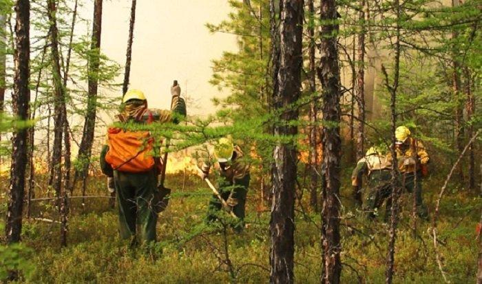 Более 19тысяч гектаров лесных пожаров потушили вПриангарье заминувшие сутки