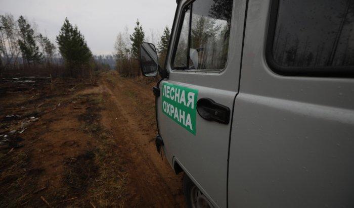 Более 18тысяч гекторов леса продолжает гореть вИркутской области