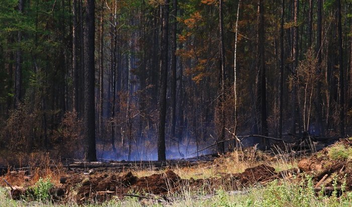 ВПриангарье период лесных пожаров подходит кконцу