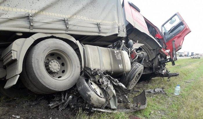 Пять человек погибли сегодня вДТП наавтодороге Р255 «Сибирь» (Видео)