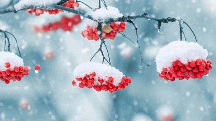 Вближайшие сутки натерритории Иркутской области ожидается снег иусиление ветра