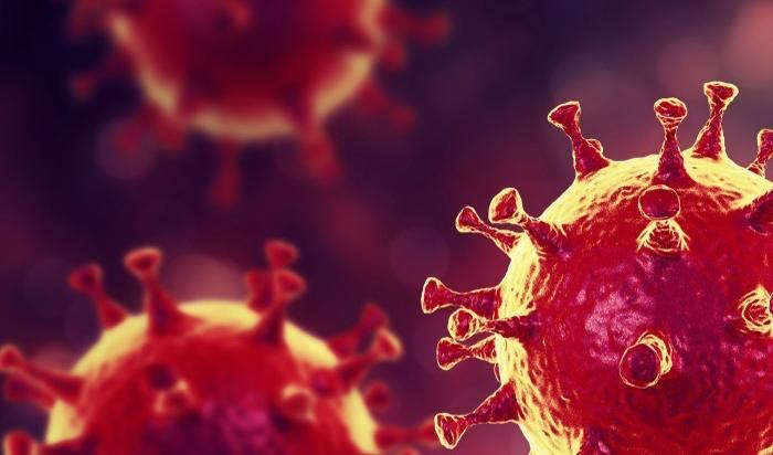 В России спрогнозирован пик заражения коронавирусом