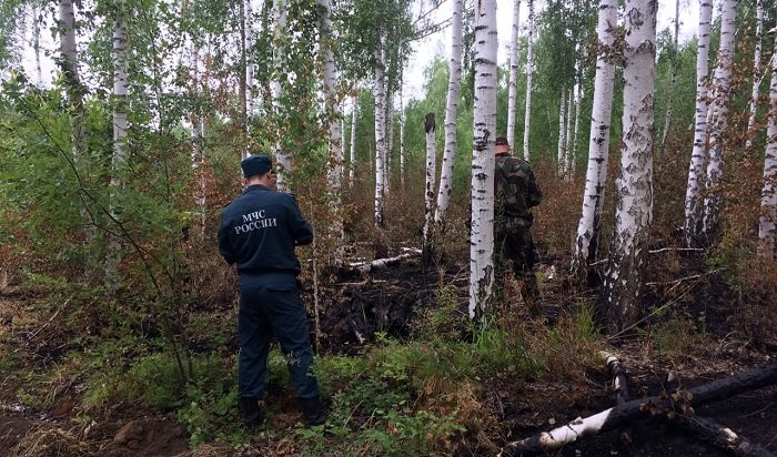 923лесных пожара было зарегистрировано в2020году натерритории Иркутской области