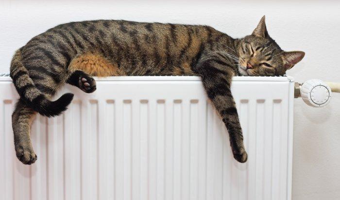 Сегодня в домах  Правобережного округа отключат отопление