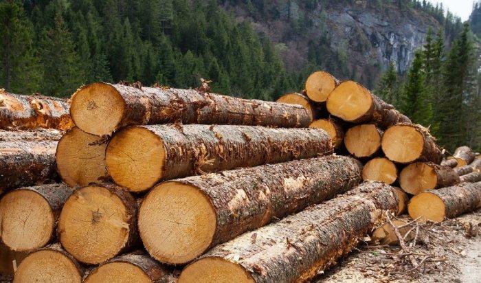 ВИркутской области полицейские задержали местного предпринимателя поподозрению вконтрабанде леса