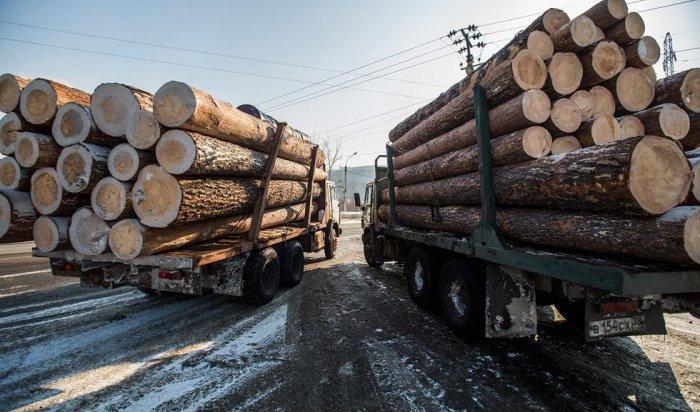 ВИркутской области «черные лесорубы» подожгли личный автомобиль полицейского