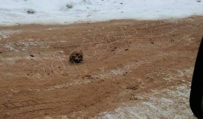 Дороги Киренска посыпали песком счеловеческими останками