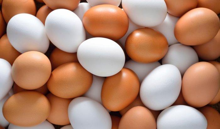 Все дело в яйцах: в Иркутске мошенники обманули кондитера на 400 тысяч рублей