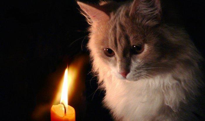 207 жилых домов в двух населённых пунктах Тайшетского района остались без света