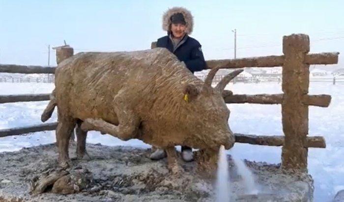 Якутский скульптор к Новому году слепил гигантского быка из навоза