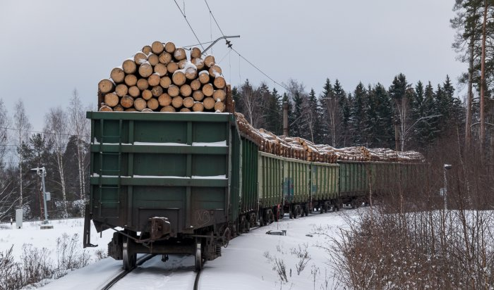 В Зиме задержали трех жителей и гражданина КНР за контрабанду леса на 200 миллионов рублей
