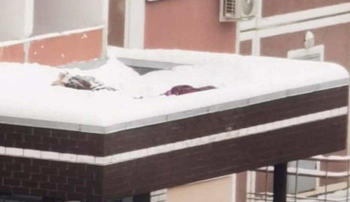 ВХимках две двенадцатилетние девочки выпали изокна 17этажа