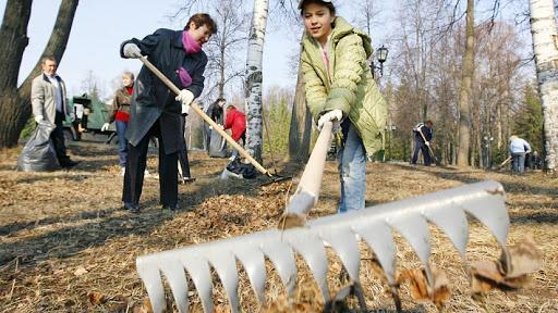 В рамках субботника в Иркутске очистили берег реки Ушаковки