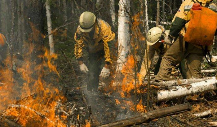 В Приангарье зафиксирован первый в 2021 году лесной пожар