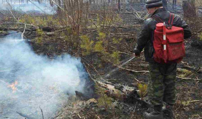 Запрошедшие сутки вИркутской области ликвидировано два лесных пожара