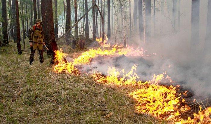 Шесть лесных пожаров ликвидировано в Приангарье 28 апреля