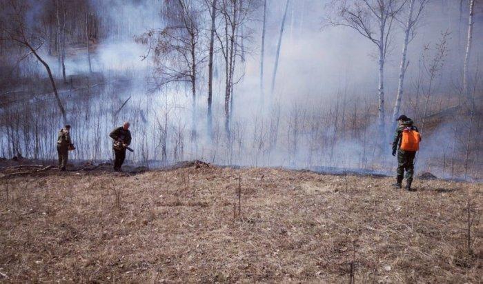 Три лесных пожара обнаружено иликвидировано 3мая вИркутской области