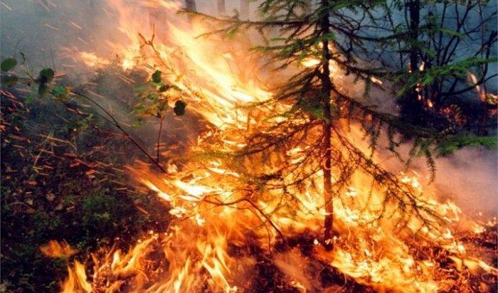 9 лесных пожаров ликвидировано в Иркутской области за минувшие сутки
