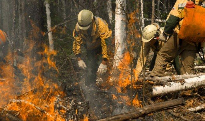 Два лесных пожара ликвидировали в Иркутской области за прошедшие сутки