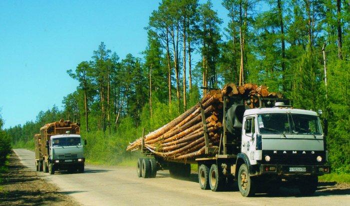 В Иркутской области полицейские пресекли незаконную заготовку деловой древесины