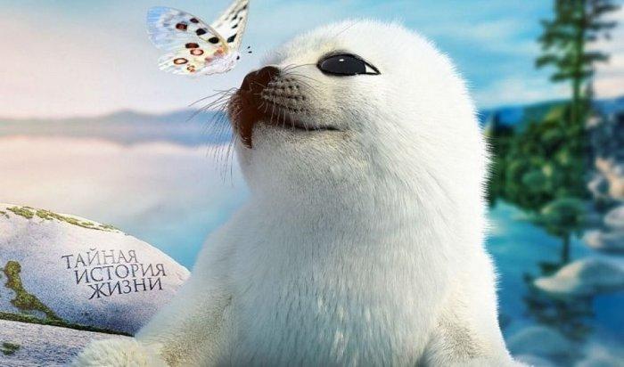 Фильм «Байкал. Удивительные приключения Юмы» россияне смогут увидеть с 10 июня в кинотеатрах
