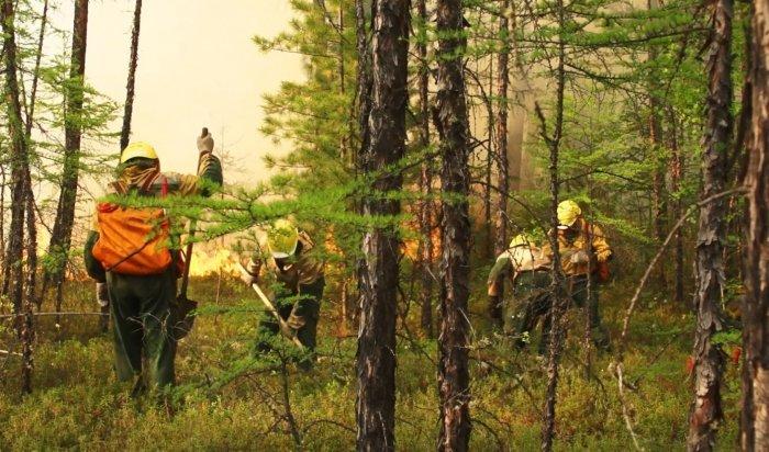 Заминувшие сутки влесном фонде вИркутской области локализовано два пожара