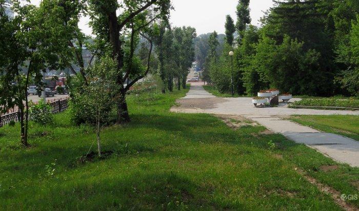 Руслан Болотов предложил вознаграждение за видеозаписи разгрома Лисихинского парка