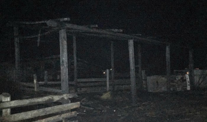 ВТулунском районе 9-летняя девочка подожгла сарай ссеном