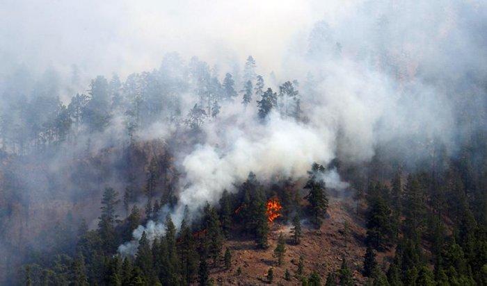 Шесть лесных пожаров ликвидировано заминувшие стуки вПриангарье
