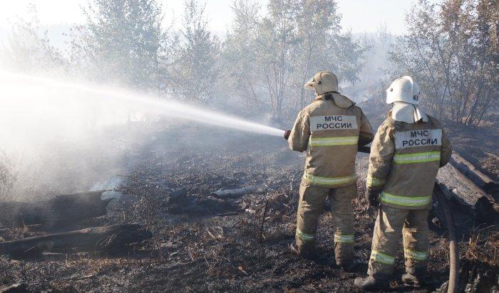 ВТульской области мальчики своими силами тушили пожар, пока ждали спасателей (Видео)