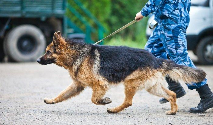 Иркутские полицейские втечение нескольких часов разыскали пропавшего мальчика