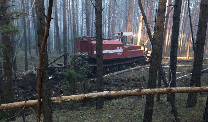 Запрошедшие сутки вИркутской области ликвидировано 12лесных пожаров