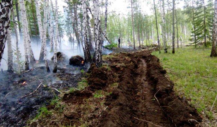 До98тысяч гаувеличилась площадь лесных пожаров вИркутской области