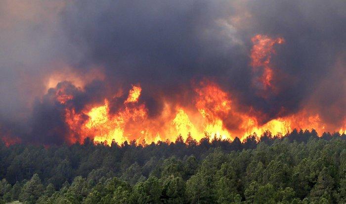Заминувшие сутки вИркутской области ликвидировано четыре лесных пожара