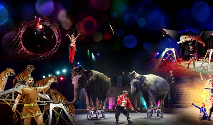 День рождение государственного цирка России