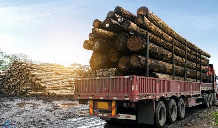Житель Тайшета незаконно вывез вКитай лес на31млн